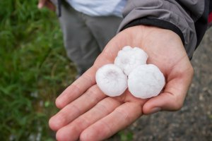 Man holding golf-ball sized hailstones in his hand